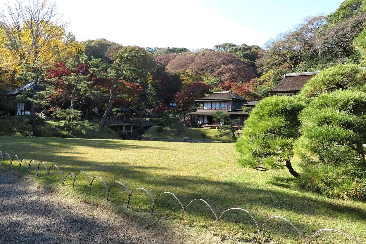 絶景スポット『三渓園』で紅葉!静かで落ち着いた場所です【横浜市中区】